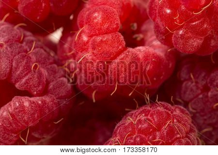 Raspberry. Raspberry. Raspberry pattern. Raspberry texture. Raspberry close up. Ripe raspberry isolated on white background close up
