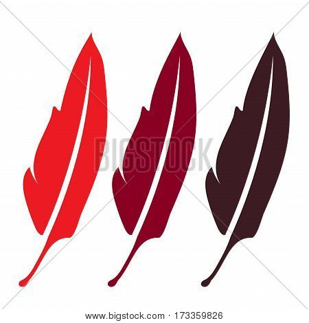 three red featherelegance literature writing symbol - plume beautiful silhouette quillsing for zoo bird isolated object