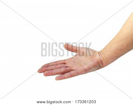 Female hand presents nothing with blank place isolated on white background