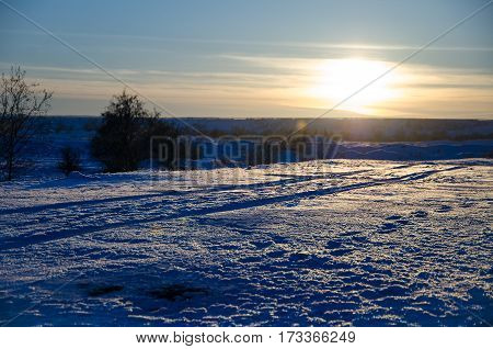 Winter sunset landscape with the frosty forest trees and sunlight beams