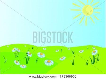 The camomiles field, a sun, a sky.