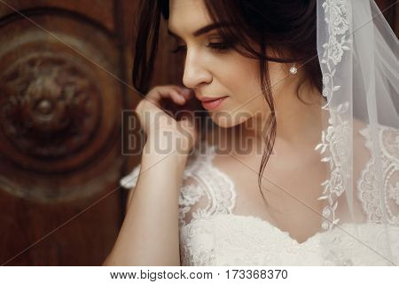 Portrait Of Beautiful Brunette Woman, Newlywed Bride In White Lace Wedding Dress With Veil And Pearl
