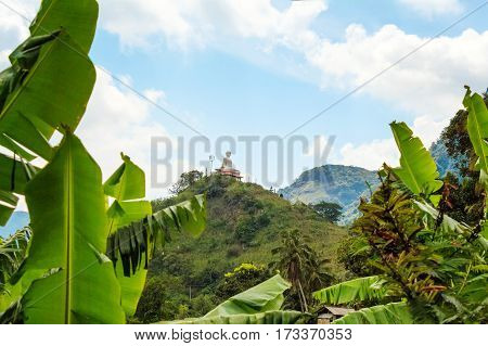 Scenic view with tropical forest and mountains in Sri Lanka