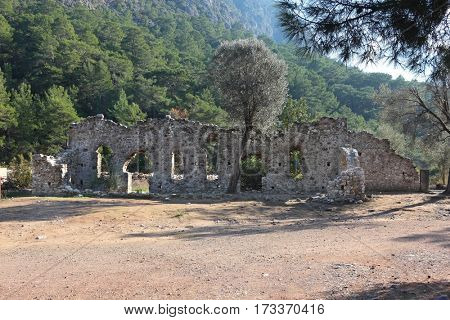Ruins of ancient town of Olympos in Turkey