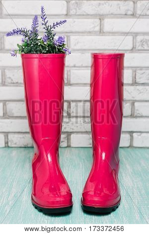Gumboots on wooden and brick wall background. Spring concept