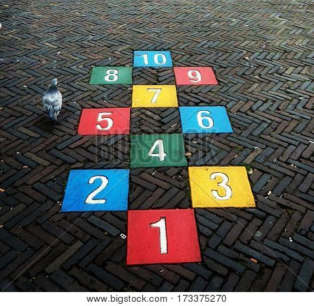hopscotch and bird - Numbers, street ,clourful