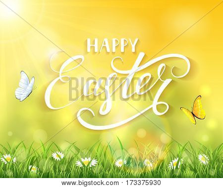 Nature Easter background with a two butterflies flying above the grass and flowers, sun beams and lettering Happy Easter, illustration.