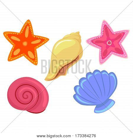 Illustration of Colorful Sea Shells and StarFish