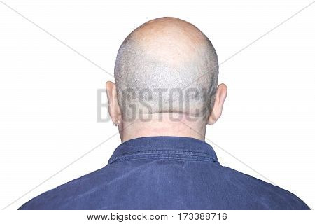 Back of man with bald head and earring in ear isolated on white background