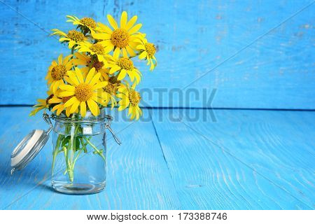 closeup daisies in a bottle on blue wood table