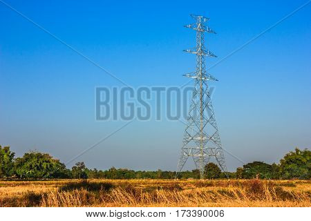 high voltage pole without wire in paddy rice and blue sky