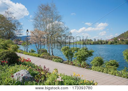 Pictorial Lakeside Tegernsee With Amelanchier Tree And Lantern