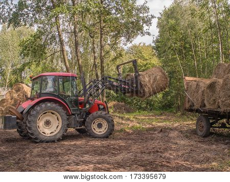 Wolka Zamkowa Poland - August 13 2016: Tractor rearranging big bales of straw