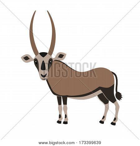 Cartoon Oryx Antelope isolated on white background. vector illustration for children