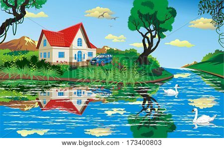 Summer country landscape. House by the river. Swans on the river. Vector illustration
