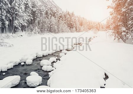 Mountain River And Forest After Snowfall.