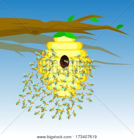 Yellow bee hive on a tree branch. Bee hive isolate. Vector illustration of bee house with a circular entrance. Insect life in nature. Bees near the hive. Beehive in a tree branch