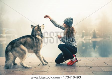 Image of young girl with her dog, alaskan malamute, outdoor at autumn or winter. Dog food. Feeding domestic pet. Husky