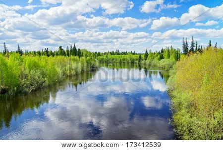 Spring scenic landscape with river and blue sky with clouds