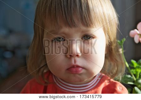 Sad little girl portrait crying closeup looking at camera indoor Depression loneliness stress or fatigue concept child don't feeling safe emotional face