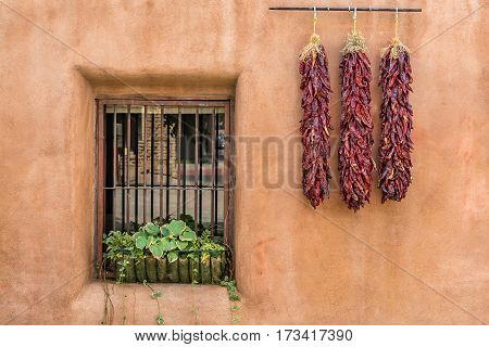 A ristra is an arrangement of drying chile pepper pods garlic bulbs or other vegetables for later consumption. In addition to its practical use the ristra has come to be a trademark of decorative design in the state of New Mexico.