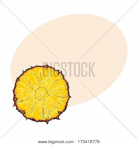 Unpeeled round pineapple slice, top view, sketch style vector illustration with place for text. Realistic hand drawing of fresh, ripe pineapple slice, half pineapple