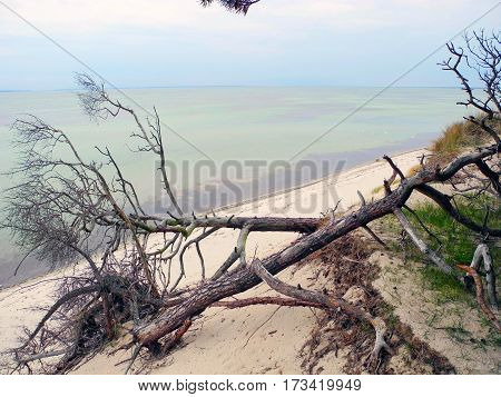 The South Beach Hel Spit in Poland.