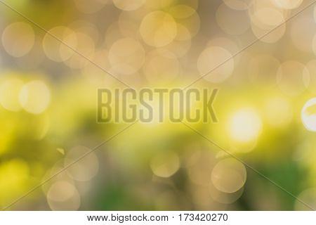 Light bokeh background. Natural light. Blur light