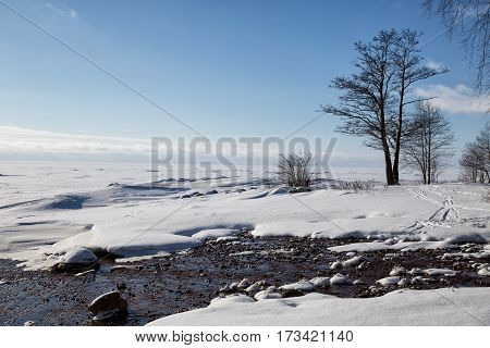 Non-freezing stream flows into the frozen Gulf of Finland. Winter landscape