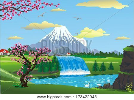 The scenery of cherry blossoms at a mountain waterfall. Country cottages near the waterfall. Swans on a mountain lake near the waterfall. Vector illustration