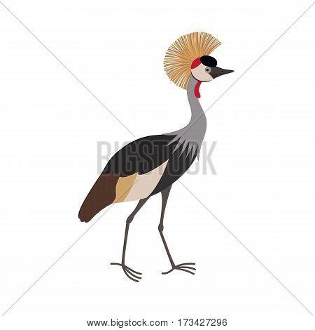 Grey crowned crane Balearica regulorum cartoon isolated on white background. vector illustration