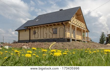 building of a wooden house on a meadow covered with flowering dandelions