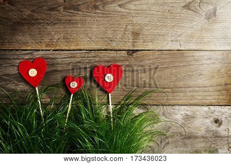 Beautiful Hearts Flowers on Green Grass Valentine's Day or Love Concept.