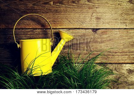 Beautiful Colorful Yellow Watering Can on Green Grass on Wooden Background. Top View with Copy Space.