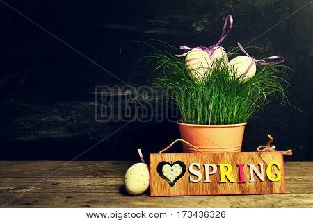 Decorative Colorful Eggs in Flower Pot with Fresh Green Grass on Wooden Table. Horizontal with Copy Space.