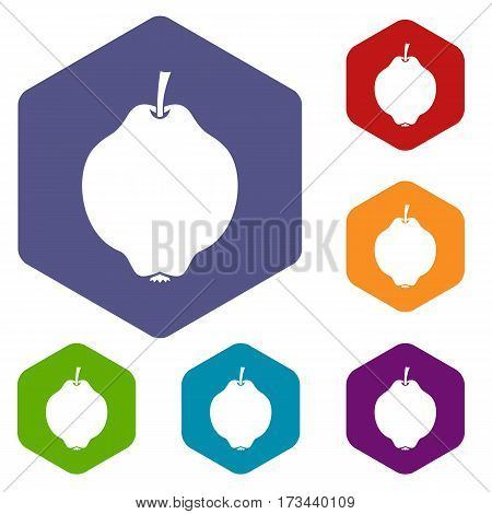 Quince fruit icons set rhombus in different colors isolated on white background