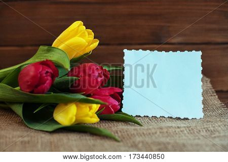Spring flowers on a wooden background. Concept of holiday birthday Easter March 8.