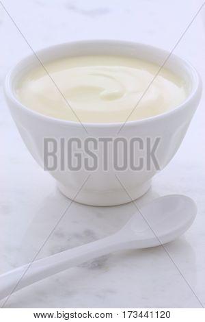Fresh Plain Yogurt
