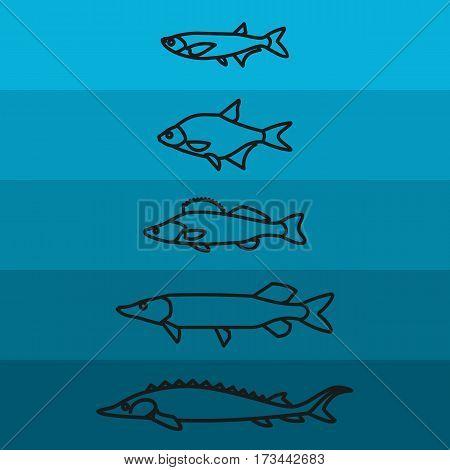 River fish, Fish icons, vector, illustration, sea fish