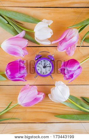 Bouquet Of Tender Pink Tulips With Purple Clock On Light Wooden Background