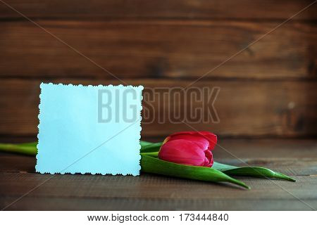 Welcome card and red tulip on dark wooden background. Concept of holiday birthday Easter March 8.