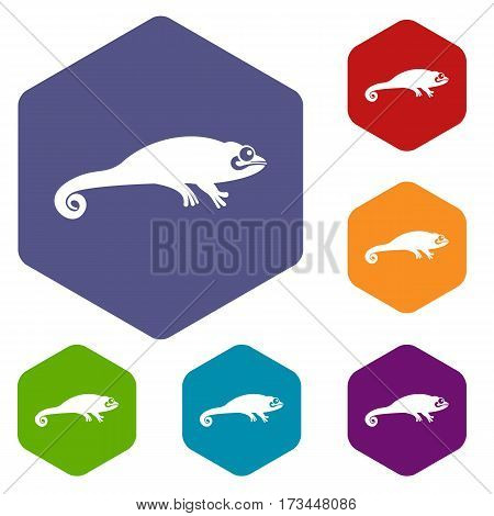 Chameleon icons set rhombus in different colors isolated on white background