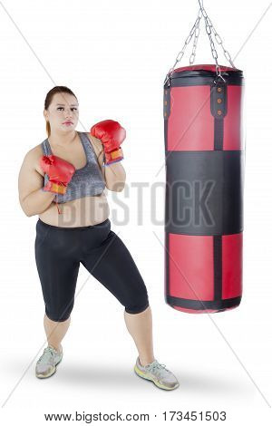 Pretty overweight girl doing workout while wearing boxing gloves near a boxing sack isolated on white background