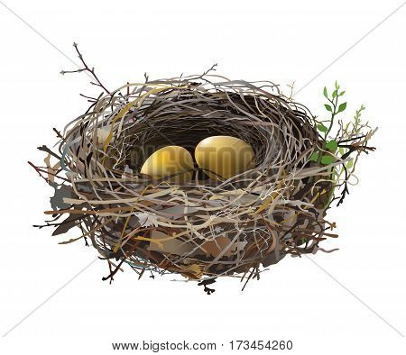 Gold eggs in Bird's Nest. Hand drawn vector illustration of a nest with two golden eggs, surrounded by green shoots, on transparent background.