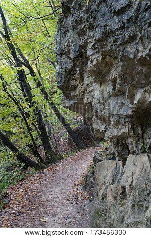 Rocks, pathway and vegetation in Plitvice national park, Croatia