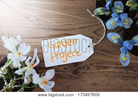 Sunny Label With English Text Garden Project. Spring Flowers Like Grape Hyacinth And Crocus. Aged Wooden Background