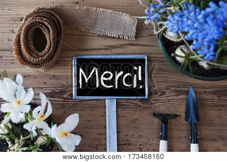 Sign With French Text Merci Means Thank You. Spring Flowers Like Grape Hyacinth And Crocus. Gardening Tools Like Rake And Shovel. Hemp Fabric Ribbon. Aged Wooden Background