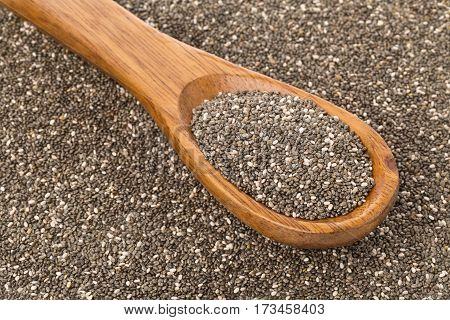 Raw unprocessed black chia seeds on wooden spoon on chia seed background