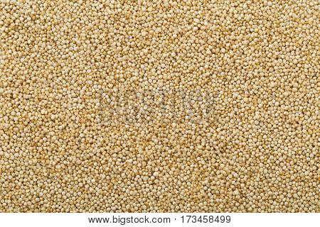 Raw whole unprocessed quinoa seed frame filling background texture