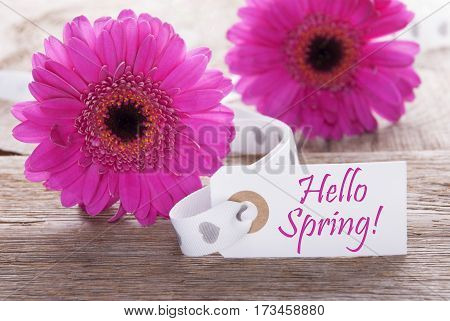 Label With English Text Hello Spring. Pink Spring Gerbera Blossom. Vintage, Rutic Or Aged Wooden Background. Card For Spring Greetings.